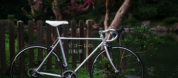 [ROCKBIKES]日本のロードバイクという選択肢[VIGORE]